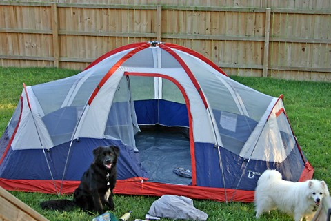 Buying a spacious tent is a great camping tip when your camping with pets and kids