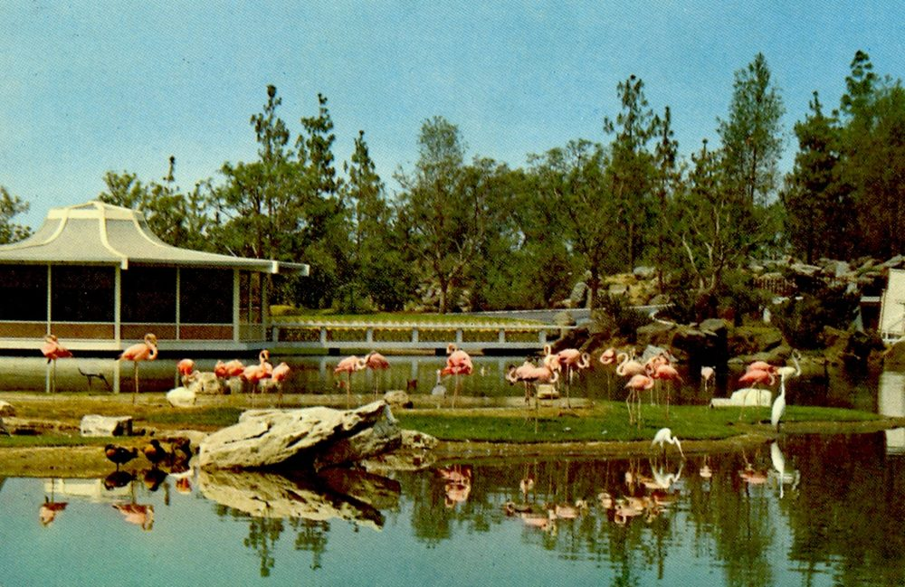 Abandoned California Theme Parks A Tale Of 2 Busch