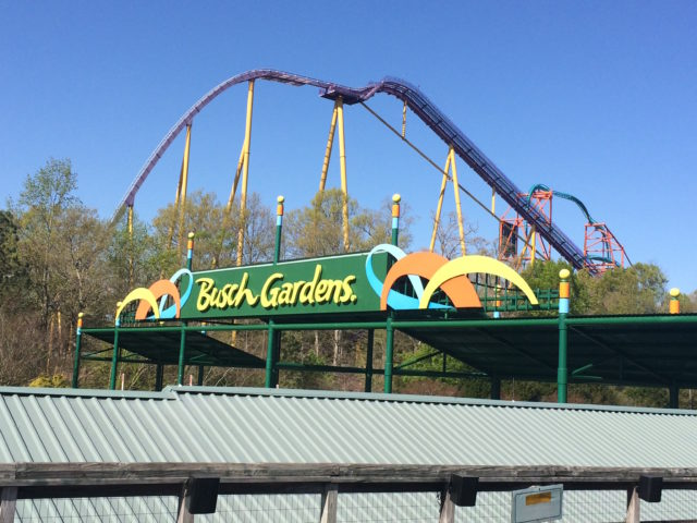 Busch Gardens Williamsburg 2022 Calendar.A Theme Park Enthusiast S Insider Tips Tricks For Visiting Busch Gardens Williamsburg Va The Best Time To Go Ways To Save Time Money In The Park And The Best