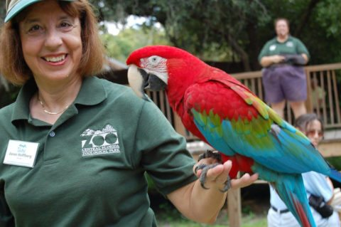 Central Florida Zoo - cheap central florida attractions