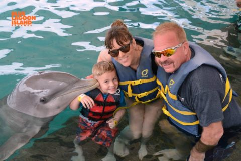 On the Dolphin Encounter on Blue Lagoon Island, you get up close with a dolphin in the Bahamas.