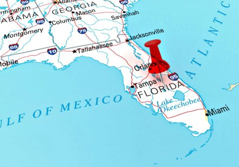 Helpful tips for planning a road trip to Florida!