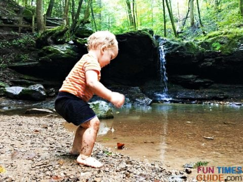 Toddler exploring nature - see the butterfly?