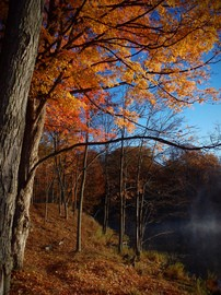 fall-colors-on-lake-by-inottawa.jpg