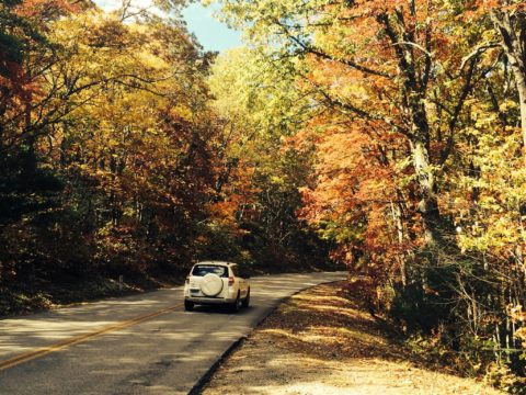 Asheville Blue Ridge Parkway Fall