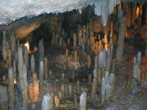 harrisons-cave
