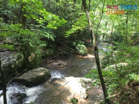 Some of the water from Spruce Flats Falls spills into a prong of the Little River in East Tennessee.