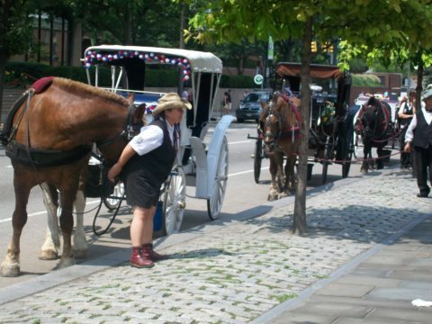 Visit Philadelphia Horse & Carriage Ride