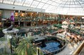 sea-lions-show-in-west-edmonton-mall.jpg