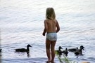 Sophie wishing she could go swimming with the ducks in Percy Priest Lake.