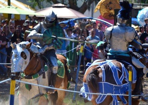 If you're looking for fun things to do in Tampa there is a cool renaissance festival also