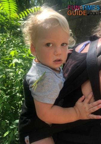 The Ergobaby 360 is a great baby carrier - just not for hiking.