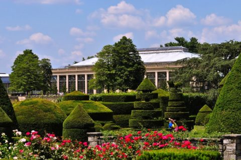 Another view of the topiary garden at Longwood Botanical Gardens.
