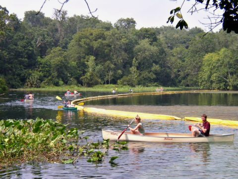 wekiwa springs - one of the more laid back central florida attractions